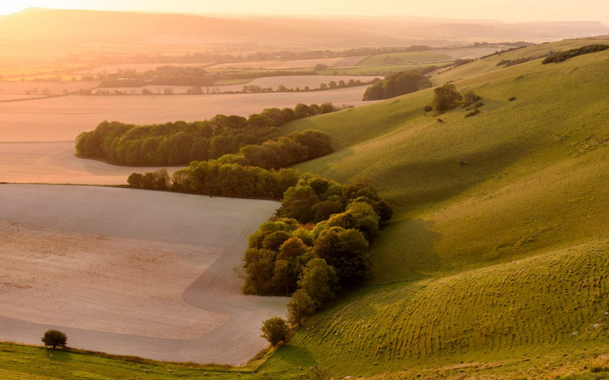 Swanborough Hill, The South Downs National Park at Sunrise